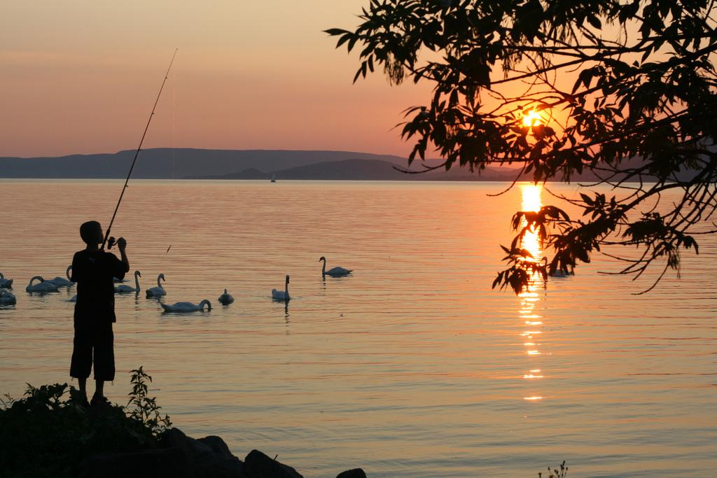 венгерское озеро рыбалка